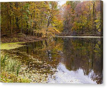 Munroe Falls  Canvas Print by Tim Fitzwater