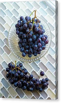 Muscat De Hambourg Grapes Canvas Print by Aberration Films Ltd