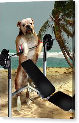 Muscle Boy Boxer Lifting Weights Canvas Print by Regina Femrite