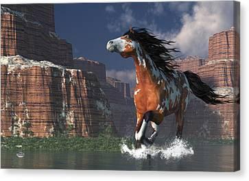Mustang Canyon Canvas Print by Daniel Eskridge