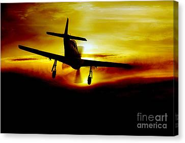 Mustang Recovery Canvas Print by J Biggadike