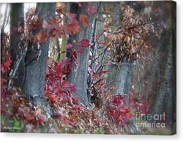 My Autumn Nostalgia. Canvas Print by  Andrzej Goszcz
