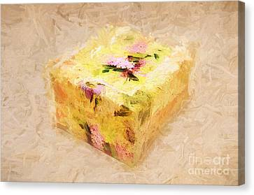 My Box Of Secrets Canvas Print by Andee Design