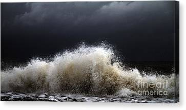 My Brighter Side Of Darkness Canvas Print by Stelios Kleanthous