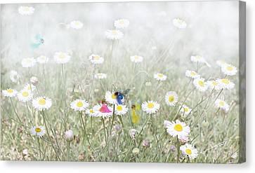 My Fairies Canvas Print by Kume Bryant