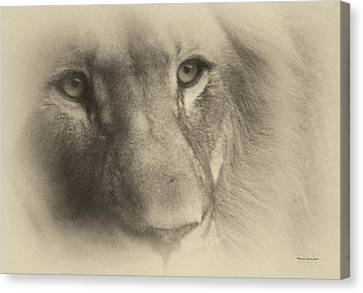 My Lion Eyes In Antique Canvas Print by Thomas Woolworth