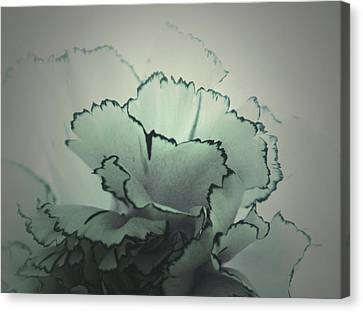 My Solitude Canvas Print by  The Art Of Marilyn Ridoutt-Greene