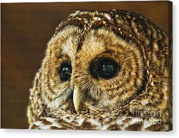My What Big Eyes You Have Canvas Print by Lois Bryan