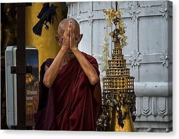 Myanmar Monk Prays Canvas Print by David Longstreath