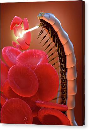 Nanobot Destroying Blood Clot Canvas Print by Tim Vernon