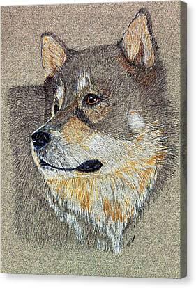 Nanook Canvas Print by Stephanie Grant