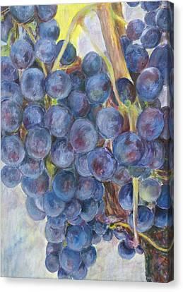 Napa Grapes 1 Canvas Print by Nick Vogel