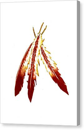 Native American Feathers  Canvas Print by Michael Vigliotti