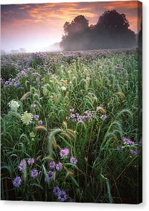 Native Prairie Sunrise Canvas Print by Ray Mathis