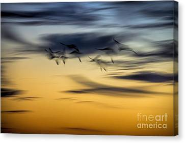 Natural Abstract Art Canvas Print by Peggy Hughes