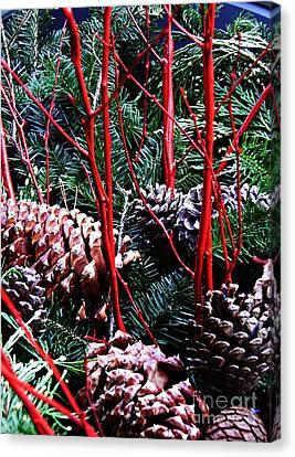 Natural Christmas Canvas Print by Sarah Loft
