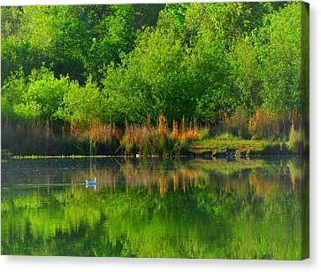Naturally Reflected Canvas Print by Joyce Dickens