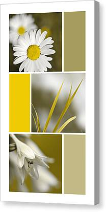 Nature's Beauty Golden Flowers Collage Canvas Print by Christina Rollo