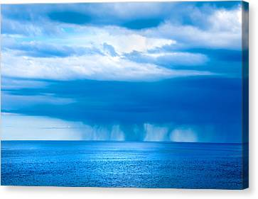 Natures Blues Canvas Print by Greg Fortier