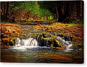 Nature's Glory Canvas Print by Cheryl Cencich