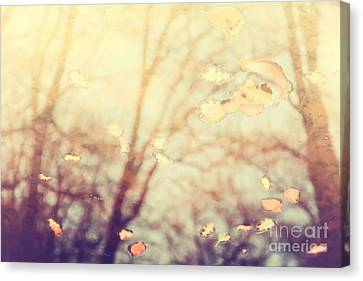 Nature's Golden Reflections Canvas Print by Natalie Kinnear