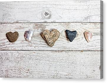 Nature's Hearts Canvas Print by Art Block Collections