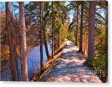 Natures Highway Canvas Print by John Malone