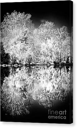 Natures Mirror Canvas Print by John Rizzuto