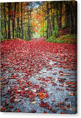 Nature's Red Carpet Canvas Print by Edward Fielding