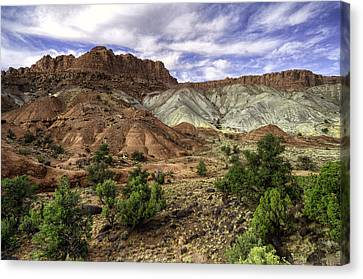 Natures Valley Canvas Print by Stephen Campbell