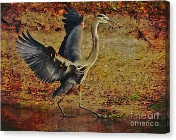 Natures Winged Grace Canvas Print by Deborah Benoit