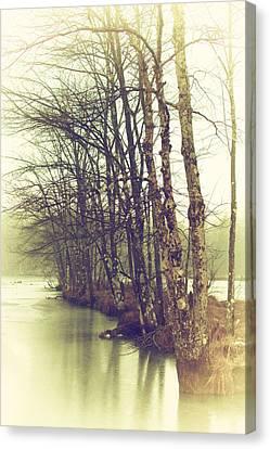 Natures Winter Slumber Canvas Print by Karol Livote