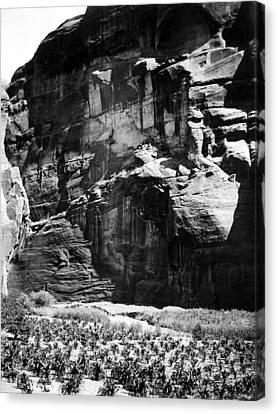 Navajo Corn Fields, C1906 Canvas Print by Granger