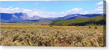 Near Chama New Mexico Canvas Print by Roena King