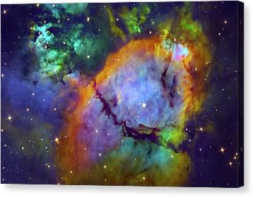 Nebula Ngc 896 Canvas Print by Tony & Daphne Hallas