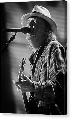 Neil Young On Guitar At Farm Aid 2010 Canvas Print by The  Vault - Jennifer Rondinelli Reilly