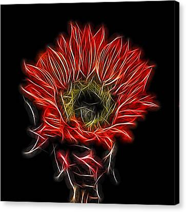 Neon Red Sunflower Canvas Print by Judy Vincent