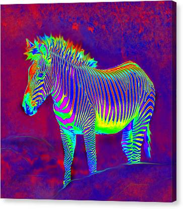 Neon Zebra Canvas Print by Jane Schnetlage