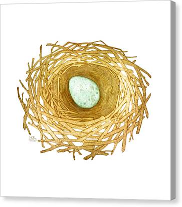 Nest And Egg Canvas Print by Catherine Noel