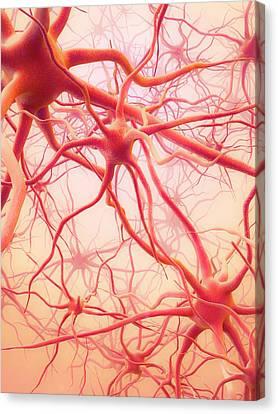 Neural Network Canvas Print by Maurizio De Angelis