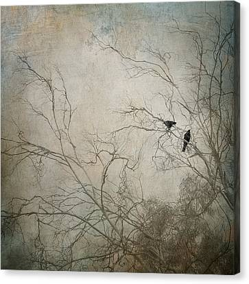 Nevermore... Canvas Print by Amy Weiss