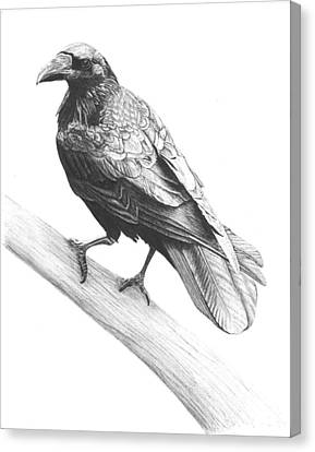 Nevermore Canvas Print by Reppard Powers