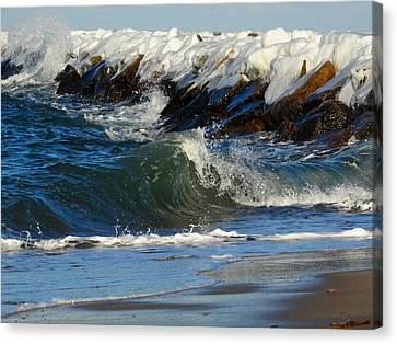 New England Winter Seashore Canvas Print by Dianne Cowen