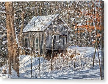 New England Winter Woods Canvas Print by Bill Wakeley