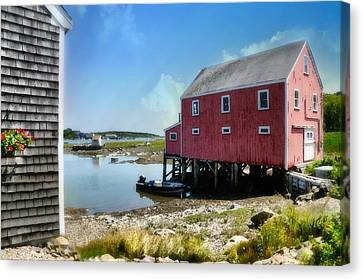 New England's  Maine Canvas Print by Diana Angstadt