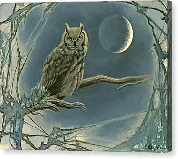 New Moon   Canvas Print by Paul Krapf