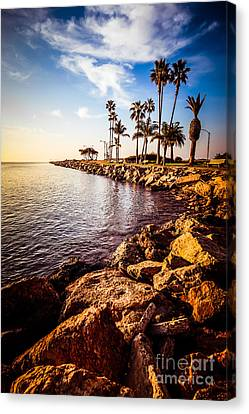 Newport Beach Jetty Picture At Jetty View Park Canvas Print by Paul Velgos
