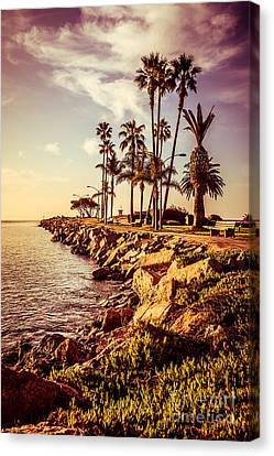 Newport Beach Jetty Vintage Filter Picture Canvas Print by Paul Velgos