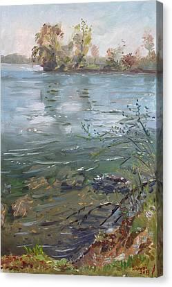 Niagara River Spring 2013 Canvas Print by Ylli Haruni