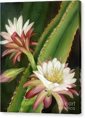 Night Cereus Canvas Print by Summer Celeste